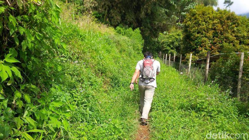 Curug Cigoong berlokasi di Kampung Tabrig, Desa Gekbrong, Kecamatan Gekbrong, Cianjur. Untuk menuju ke sini, traveler harus melewati jalan setapak kampung selama 30 menit. (Ismet Selamet/detikcom)