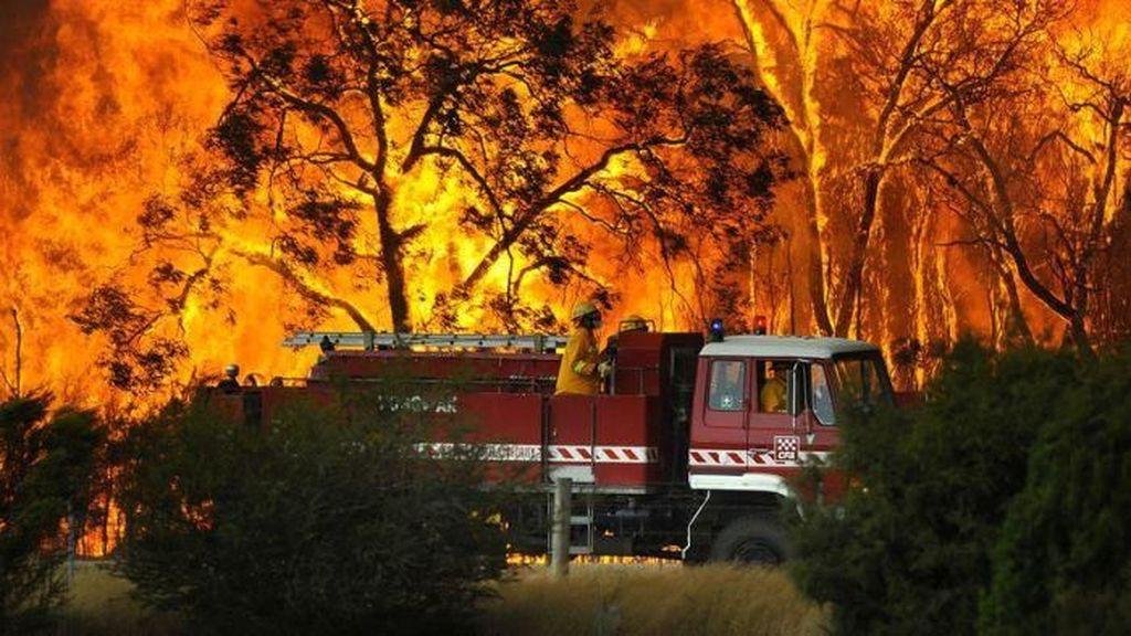 Kebakaran Hutan di Australia Tembus 18.500 Hektare, Ancam Ibu Kota