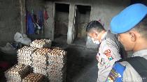 Gunakan Telur Busuk, Pabrik Kue di Lumajang Digerebek