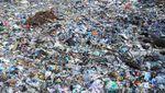 Duh, Sampah Menumpuk di Pesisir Pamekasan