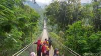 Menuju jembatan gantung, traveler akan mengenakan sabuk pengaman. Sensasi goyang saat menapaki jembatan akan mulai terasa. (Elmy Tasya Khairally/detikcom)