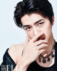 10 Fakta Unik Sehun EXO, Si Pemilik Wajah Ganteng Sempurna
