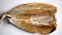 Marsha Aruan Tidak Tahu Cara Makan Ikan Asin, Begini Lho Triknya!