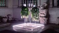 Keren! Ada Kebun Sayur Minimalis yang Bisa Tanami Puluhan Jenis Sayuran