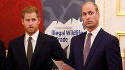 Sempat Tegang, Hubungan Pangeran William dan Harry Kini Sudah Membaik
