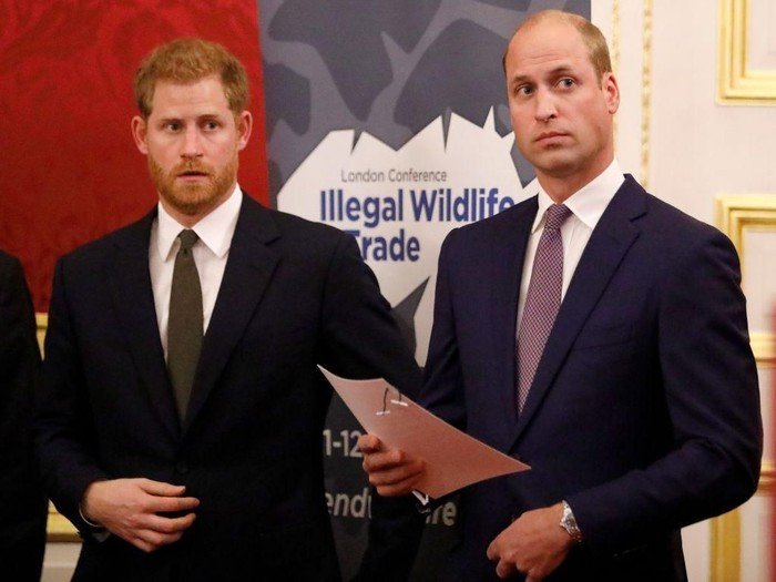 LONDON, ENGLAND - APRIL 04: (L-R) Prince Harry, Duke of Sussex, Prince William, Duke of Cambridge, Prince Charles, Prince of Wales and Sir David Attenborough attend the Our Planet global premiereat Natural History Museum on April 4, 2019 in London, England. (Photo by John Sibley - WPA Pool/Getty Images)