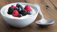 Makanan Tinggi Probiotik Untuk Turunkan Berat Badan
