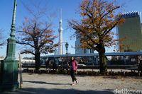 Turis berfoto dengan latar Tokyo Skytree (Syanti/detikcom)