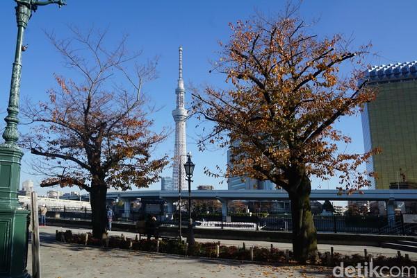 Jika traveler memiliki banyak waktu di Jepang, naiklah ke puncak Tokyo Skytree ini. Terdapat beberapa paket tiket yang bisa dipilih, yaitu ada harga tiket Tokyo Skytree paket combo seharga 3.100 Yen/ Rp 395 ribu (weekday) dan 3.400 Yen/ Rp 434 ribu (weekend) yang sudah mencakup semua lantai. (Syanti/detikcom)
