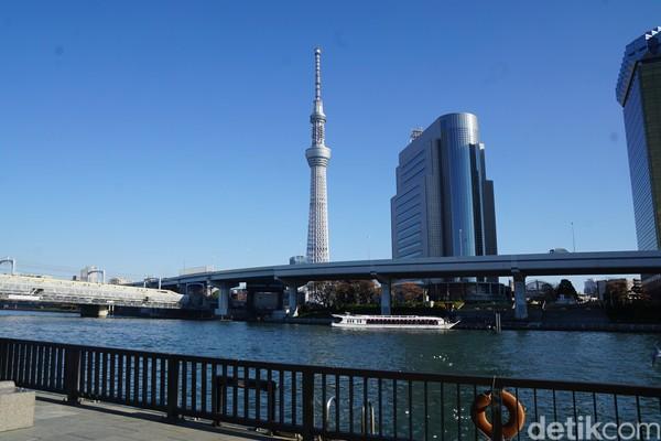 Namun bila kamu tidak ada waktu untuk naik ke menara tertinggi di dunia ini, kamu bisa menikmati ketinggiannya dari bawah saja. Yaitu dari seberang Sungai Sumida di Asakusa. (Syanti/detikcom)