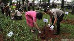 Melestarikan Alam Lewat Aksi Tanam 1000 Pohon di Jakarta Utara