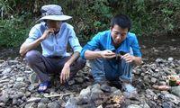 Gara-gara Video Masak di YouTube, Makan Tikus Semakin Populer di China