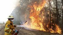 Perubahan Iklim, Kebakaran Hutan Jadi Risiko Global Masa Depan