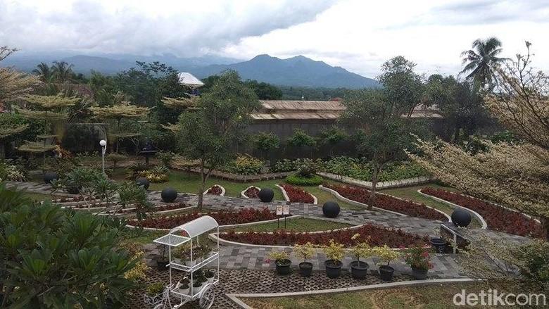 Kebun Bibit Senopati di Kota Magelang (Eko Susanto/detikcom)