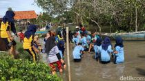1.000 Mangrove Sonneratia Alba Ditanam di Pesisir Selatan Banyuwangi