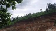 Beda Pendapat DPRD Bandung Barat soal Proyek Resor Mewah di KBU