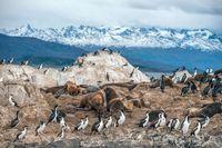 Ini Gletser Terbesar Kedua Sedunia Selain di Kutub