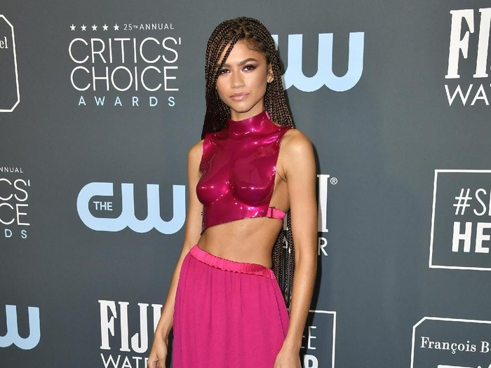 SANTA MONICA, CALIFORNIA - JANUARY 12: Zendaya attends the 25th Annual Critics Choice Awards at Barker Hangar on January 12, 2020 in Santa Monica, California. (Photo by Frazer Harrison/Getty Images)