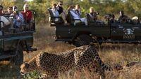 Teknologi Baru Ancam Taman Nasional Kruger Afrika