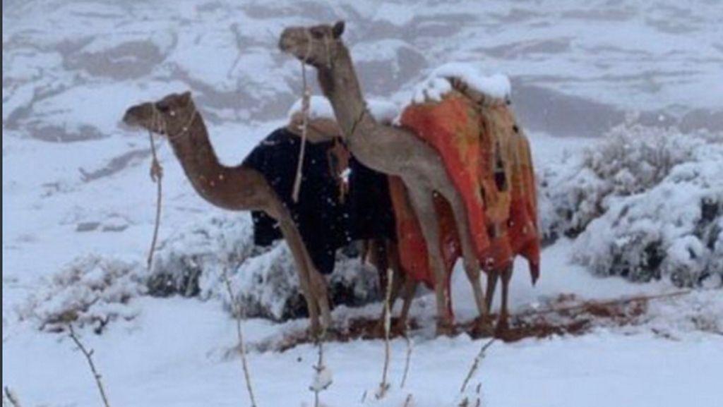 Pernah Ada Hujan Salju di Arab Saudi 2020, Jadi Tanda-tanda Kiamat?