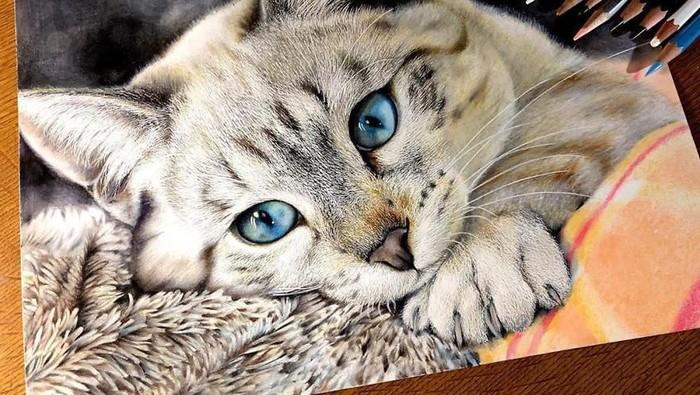 gambar kucing realistis