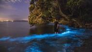 Pantai Ini Menyala Biru, Kayak di Film Animasi!