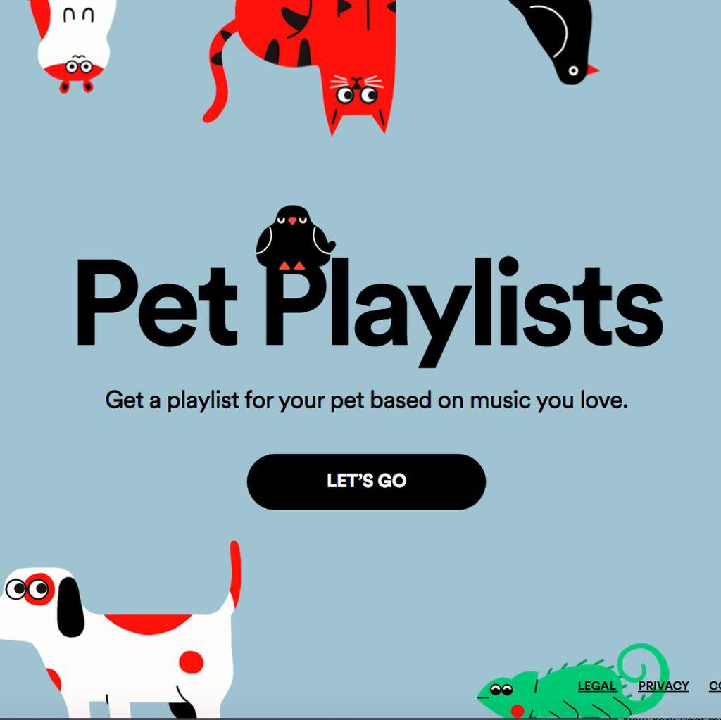 Spotify Luncurkan Playlist Lagu Untuk Hewan Piaraan
