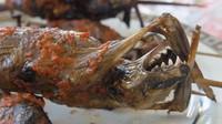 Populer Jadi Makanan Enak, Daging Kelelawar Laris Manis di 5 Negara Ini