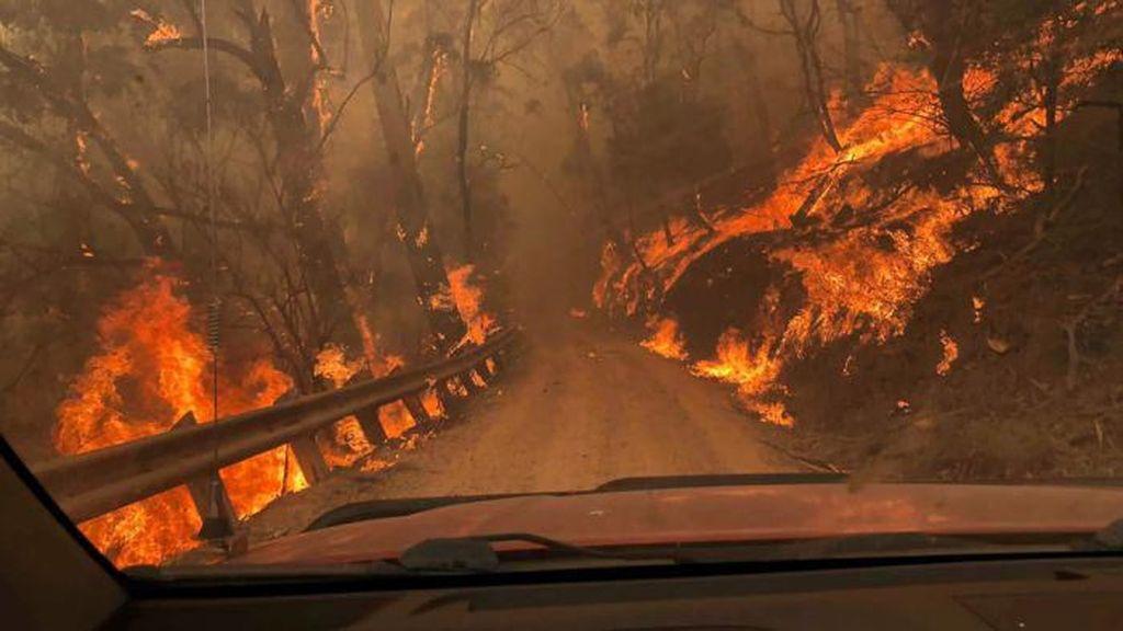 Suhu Bumi Naik, Australia Jadi Benua Paling Panas