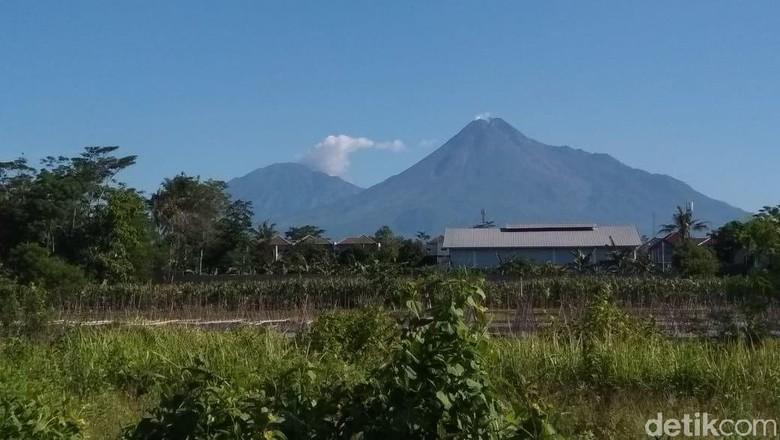 Penampakan Gunung Merapi yang cerah, Jumat (17/1/2020).