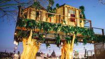 Intip Keindahan Penginapan Rumah Pohon yang Sajikan Makanan Ekstrem