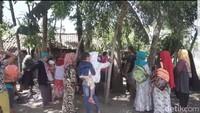 Warga Masih Berdatangan ke Lokasi Pohon Menangis di Jember