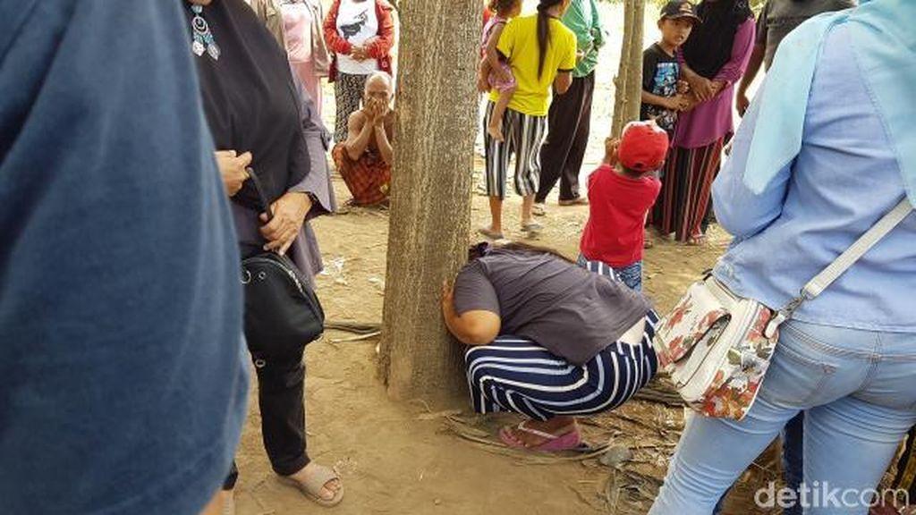 Begini Tingkah Warga Berusaha Mendengar Suara Pohon Menangis di Jember