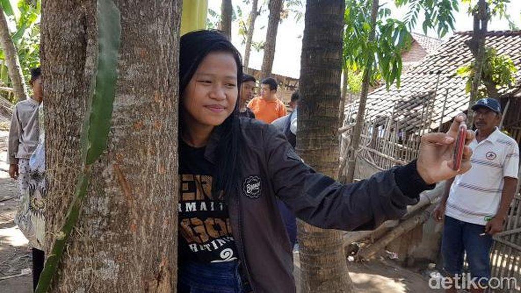 Ragam Tingkah Warga Saat Datangi Lokasi Pohon Menangis di Jember