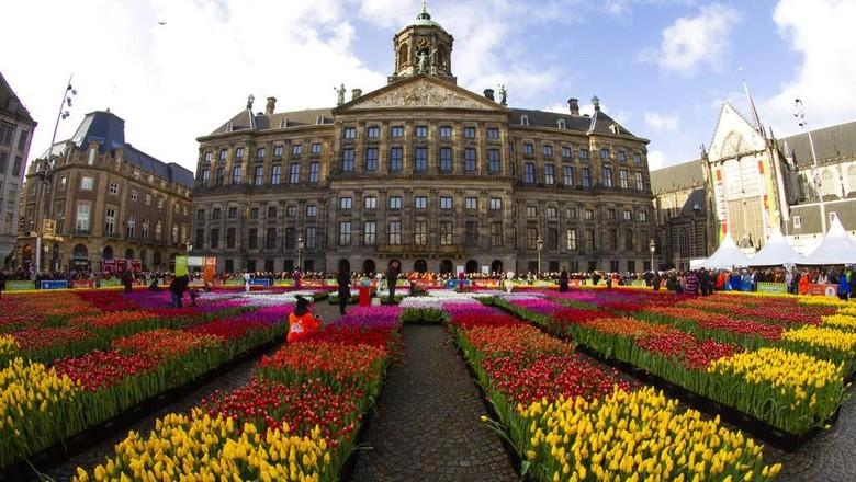 Beragam bunga tulip berbagai warna menghiasi kawasan Dam Square, Amsterdam. Keberadaan beragam bunga tulip itu untuk membuka musim tulip di Belanda.