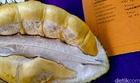 Di Pekalongan Ada Durian 'Nenek Moyang' dari Pohon Usia Ratusan Tahun