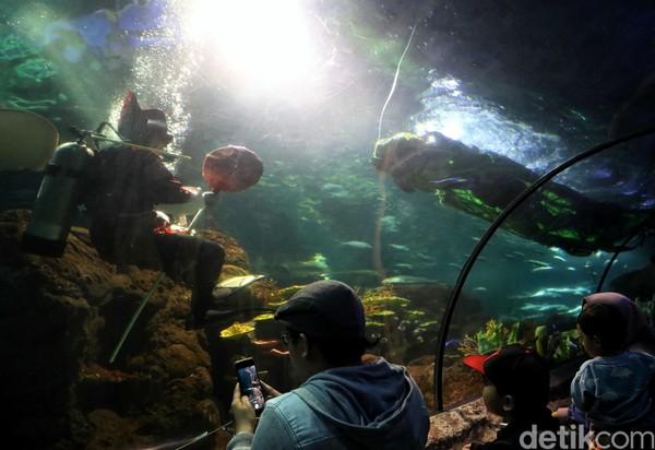 Sejumlah pengunjung antusias menyaksikan atraksi barongsai dalam air yang ditampilkan di Sea World, Ancol (Pradita/detikcom)