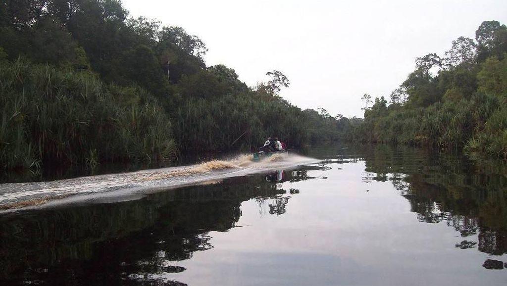 Pulau Betet di Sumsel Tak Lenyap, Hanya Abrasi di Muara Sungai