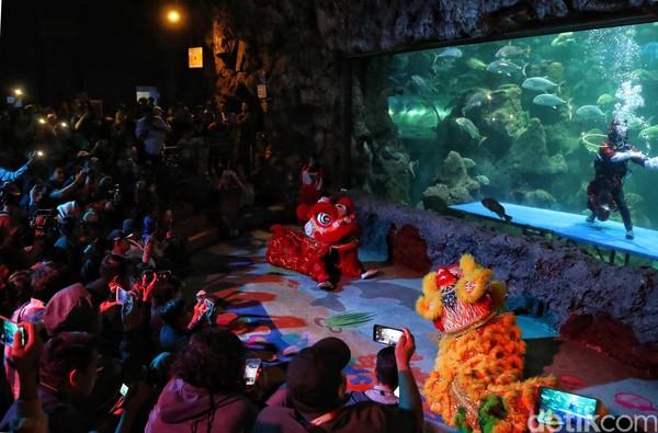 Para pengunjung memenuhi salah satu ruangan di Sea World untuk menyaksikan atraksi barongsai (Pradita/detikcom)