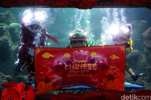 Atraksi barongsai underwater atau di dalam air menghibur pengunjung yang datang ke Sea World, Ancol, Jakarta, Senin (20/1/2020) (Pradita/detikcom)