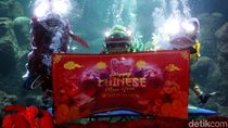 Foto: Tahun Baru Imlek, Ada Atraksi Barongsai di Bawah Air