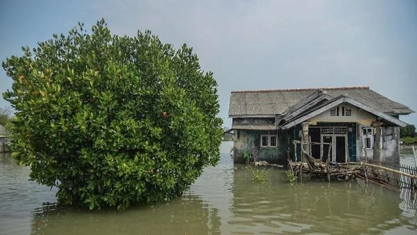 Kawasan pemukiman di utara Bekasi itu sebelumnya dihuni ratusan kepala keluarga (KK). Namun, sejak 12 tahun silam rumah-rumah tersebut tenggelam akibat abrasi. ANTARA FOTO/Adeng Bustomi