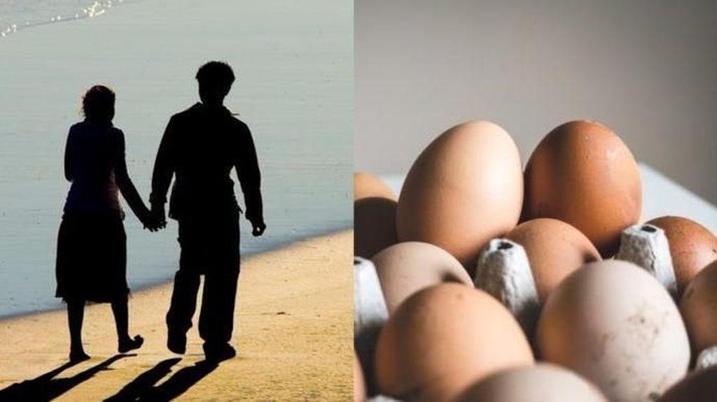 5 Kisah Pertengkaran Suami Istri yang Dipicu Telur hingga Jagung