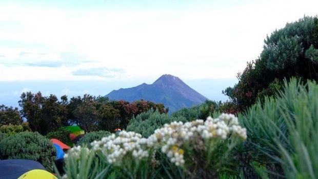 Heboh Foto Borobudur, Ini 6 Gunung di Sekitarnya