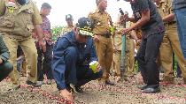 Kunker ke Soppeng, Gubernur Sulsel Tanam Jagung Bibit Indonesia-Jepang