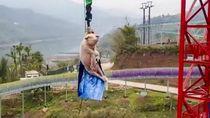 Atraksi Babi Bungee Jumping Bikin Taman Rekreasi Banjir Kritik