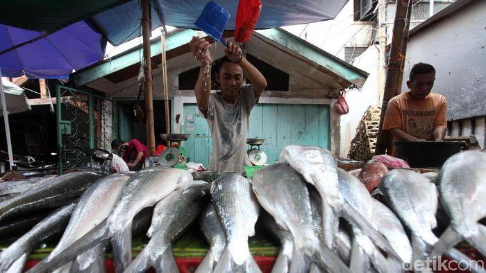 Ikan bandeng kerap diburu menjelang Imlek. Meningkatnya permintaan ikan bandeng membuat para pedagang mulai banyak gelar lapak menjajakan ikan tersebut.