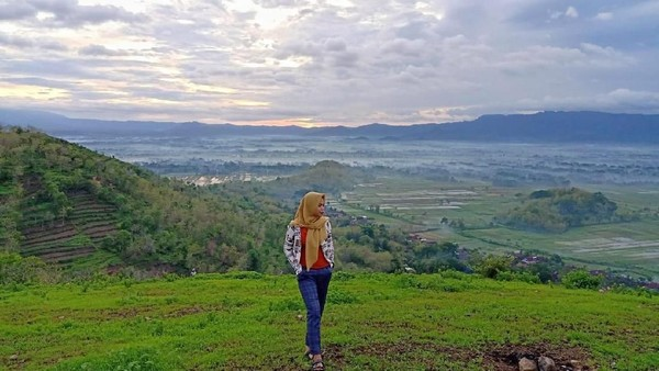 Bukit Gede ini terletak di Desa Tatung, Kecamatan Balong, Ponorogo. Pemandangan hamparan sawah menghijau memang jadi pesona utama di destinasi ini. (dok. Istimewa)