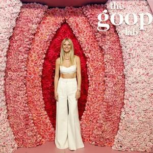 Foto: Perut Rata Gwyneth Paltrow di Usia 47 Terekspos
