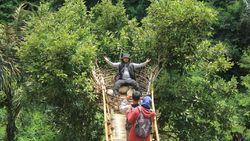 Kebun Teh Kekinian yang Instagramable di Sumedang